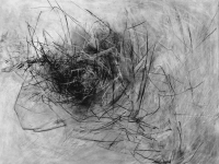 Cosmic Nest, 39x46, compressed charcoal, gesso